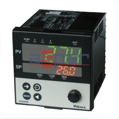 Regulator temperatury EC55 96x96